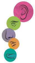 Tag der Sinne - Logo